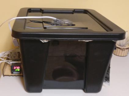 My $100 incubator.